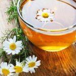 6 настоев, которые помогут очистить организм от токсинов