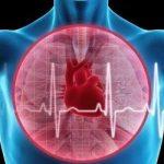 Ученые определили тип людей с самым здоровым сердцем
