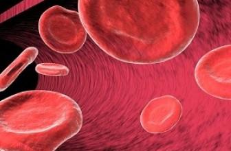 Ученые нашли связь между холестерином и погодой