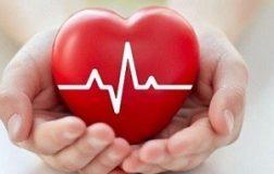 Сердечная недостаточность: 3 вкусных и полезных рецепта для поддержки сердца